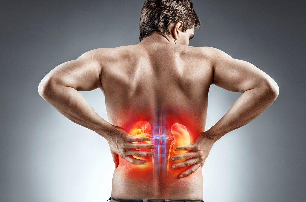 Giver dine nyrer dig ondt i ryggen?
